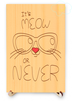 It Is Meow or Never Cute Real Wood Postcard